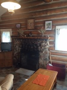Cabin 3 fireplace